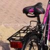 Corelli Schule Bayan Şehir Bisikleti